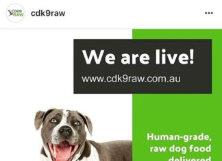 CDK9 RAW