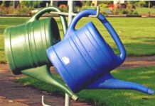 watering-can-mold